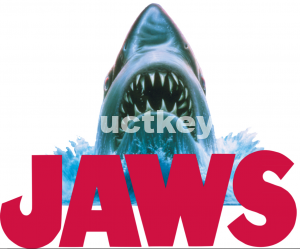 JAWS 2019 Crack with License Key Free Download {Latest}