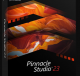 Pinnacle Studio 24.0.2 Crack full Version Torrent {Lifetime}